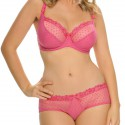 Shorty Curvy Kate Princess rose intense